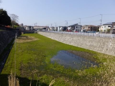 綾瀬市深谷の雨水調整池