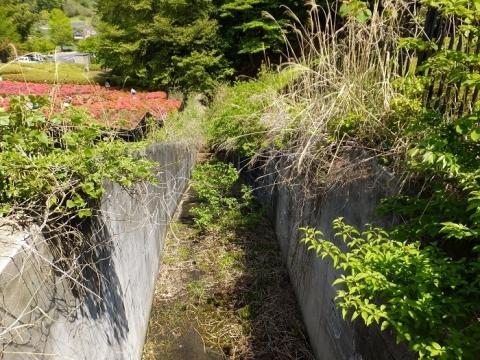 あつぎつつじの丘公園遊水池・洪水吐排水路
