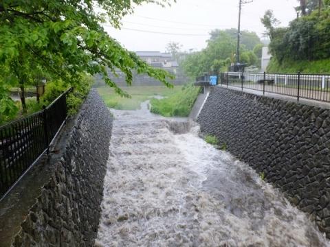鳩川分水路と道保川