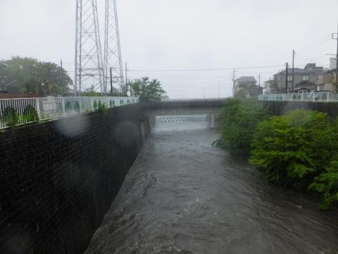 大雨の鳩川分水路