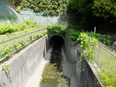 深堀川水路トンネル入口