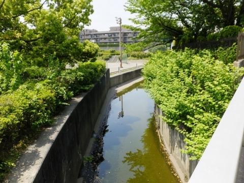 深堀川の越流堤