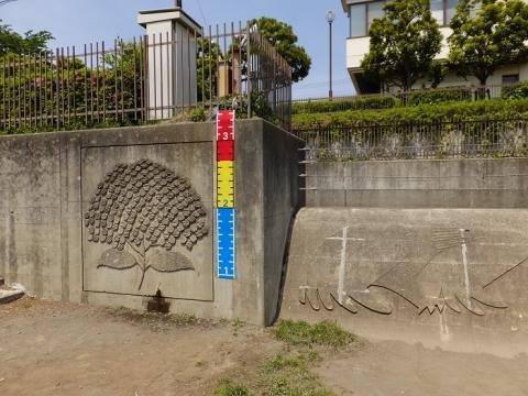 深堀中央公園調節池越流堤