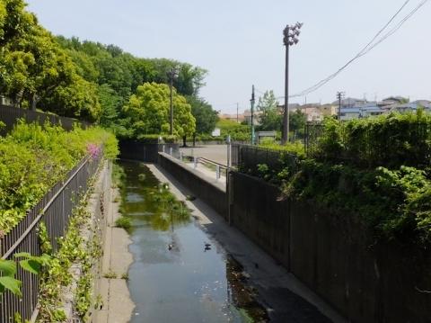 深堀川右岸の越流堤