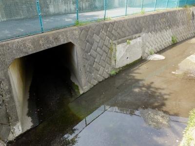 深堀川・雨水下水管が合流