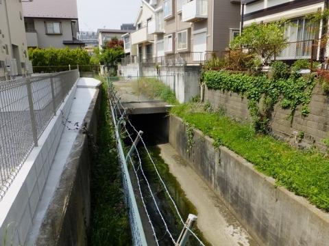 深堀川・雨水下水管吐口