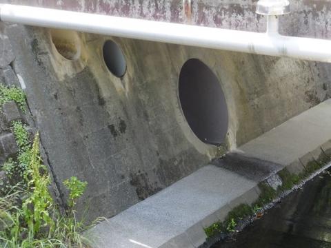 目黒川の雨水下水管吐口