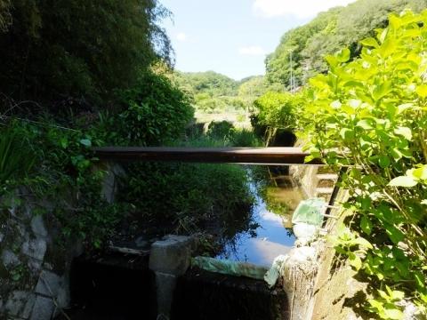 穴川の農業用取水堰