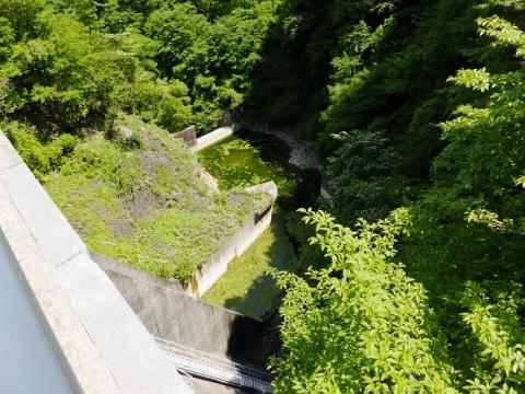 品木ダム直下の湯川