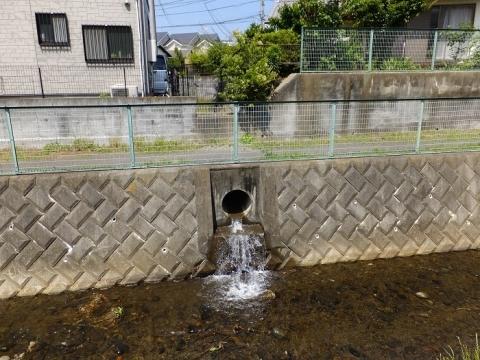 新戸用水路。余水排水