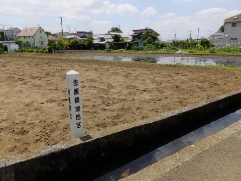 新戸用水路と田んぼ