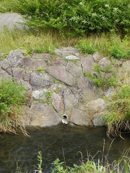 鳩川浄化施設・放流ピット点検口と放流管