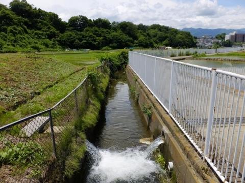 厚木市飯山の用水路