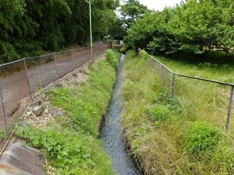 厚木市飯山の用水路・あやめの里付近