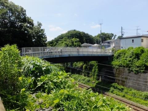 横浜線ひのき陸橋
