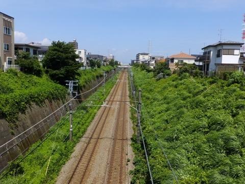 ひのき陸橋から見た横浜線