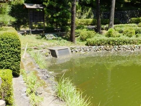 薬師池の取水口