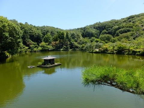 薬師池・東京都町田市