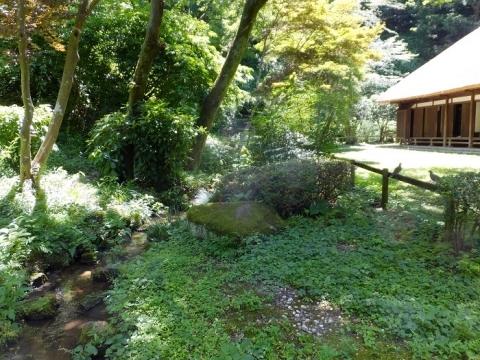旧荻野家前を流れる小川