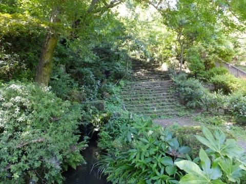 薬師池公園の石段