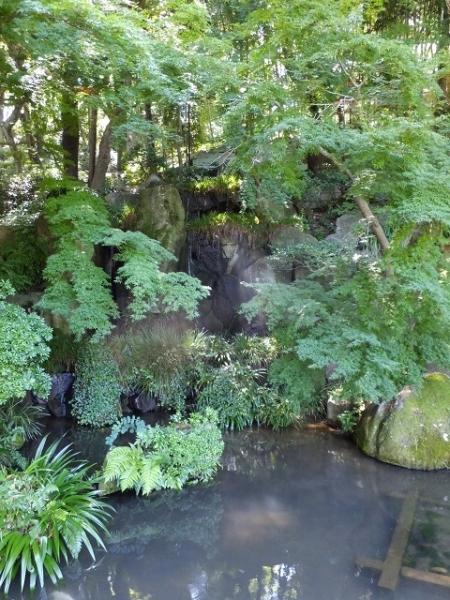薬師池公園の滝