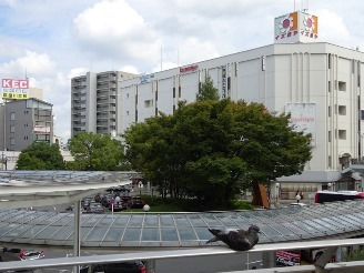 neyagawa3.jpg