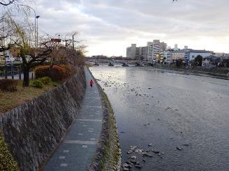 shichijou4.jpg