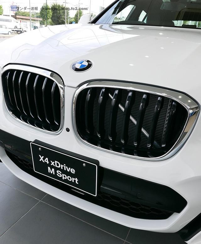 BMWX4_22.jpg