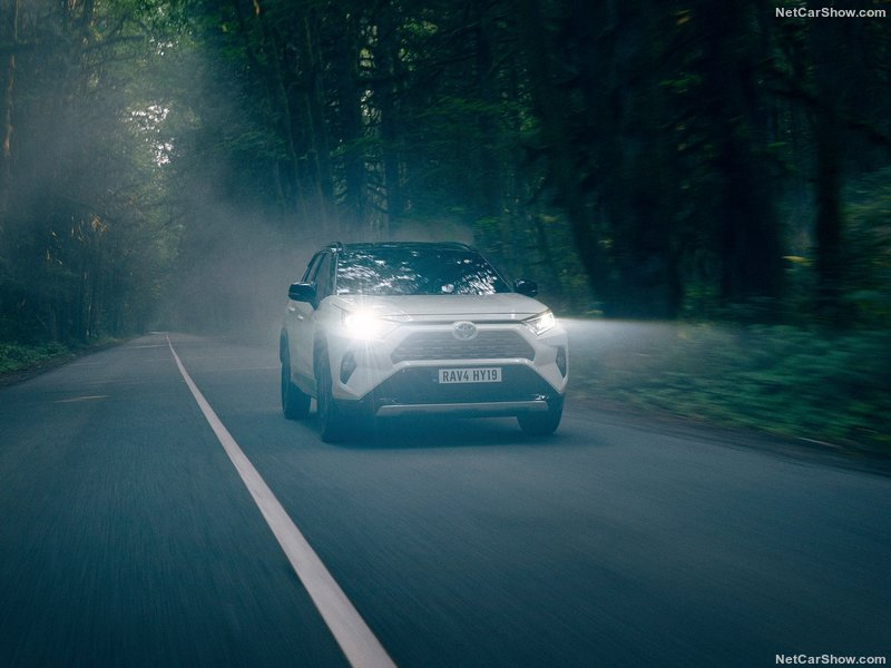 Toyota-RAV4_Hybrid_EU-Version-2019-800-24.jpg