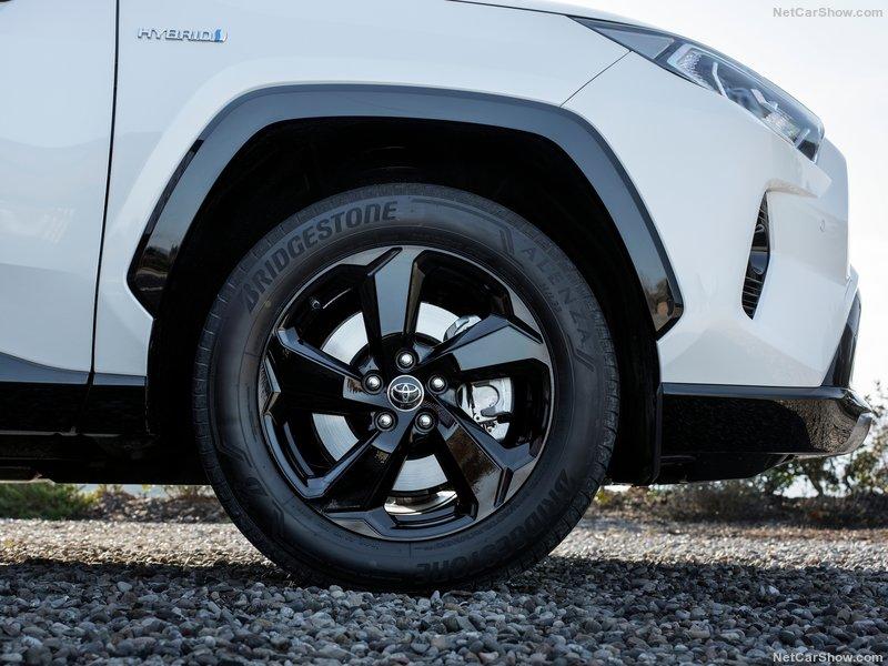 Toyota-RAV4_Hybrid_EU-Version-2019-800-8e.jpg