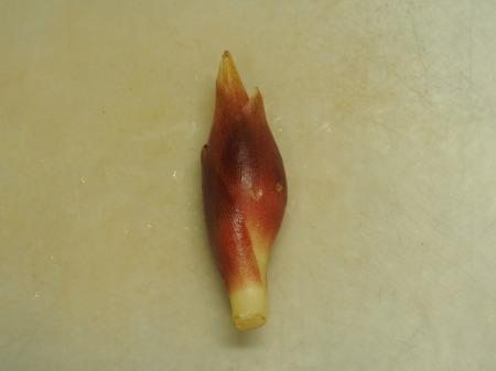 みょうがときゅうりの生ハム巻き025