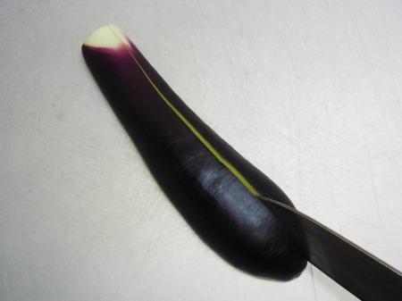 塩さばと茄子のガーリックオイル039