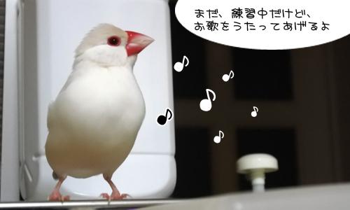 手の中で歌を歌うペックン_1