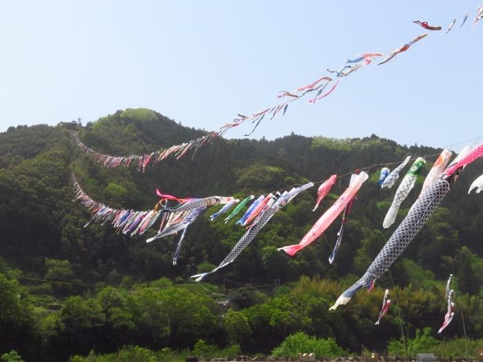 四万十 旧十和村こいのぼりの川渡し
