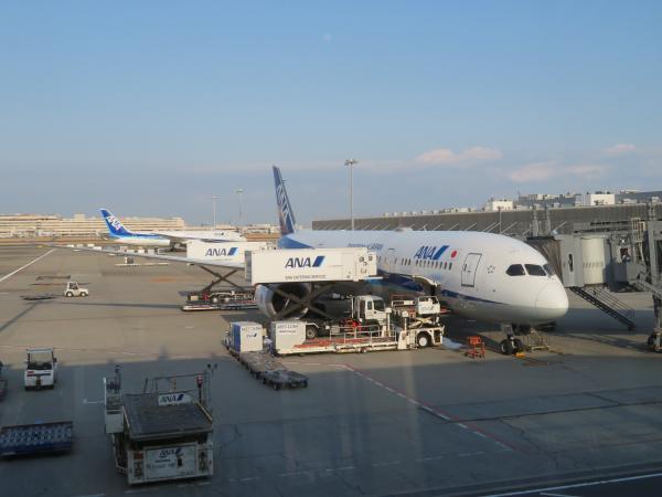 復路の飛行機(羽田空港)