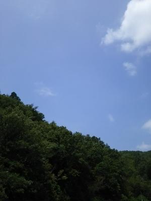 2018-08-04 (300x400)