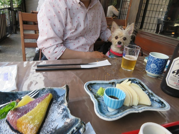 2L04 朝堀タケノコの刺身とお芋ケーキ 0421
