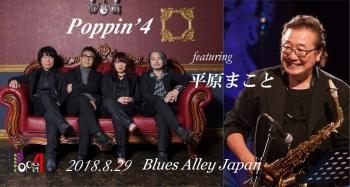 Poppin_平原_new
