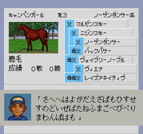 【ダービースタリオン96】再現キャンペンガール(繁殖牝馬)のパスワード