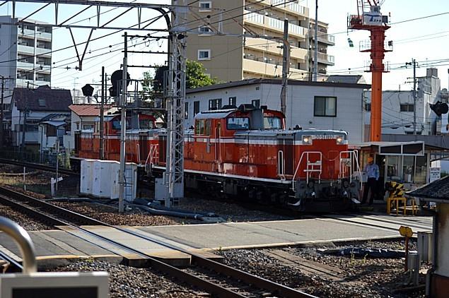 DSC_0459s.jpg