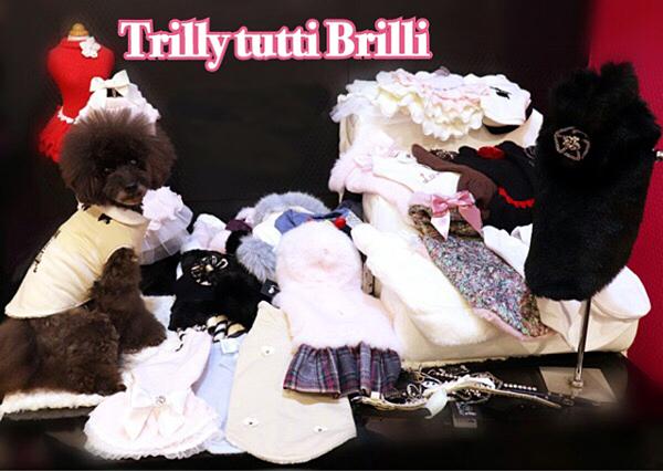 Trilly0.jpg