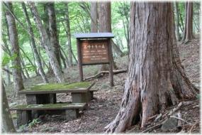 180716E 003三千年の森32