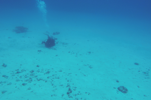 水納島で水中写真