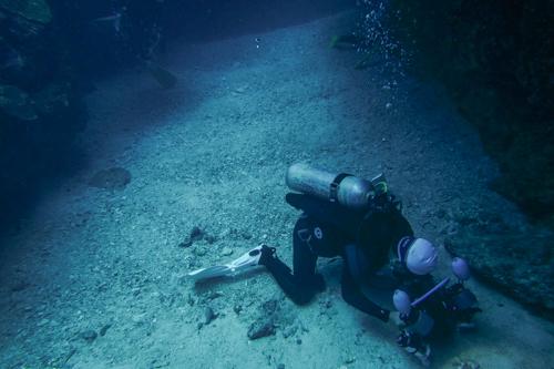 瀬底島で水中写真