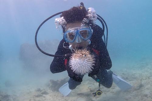 motobu diving