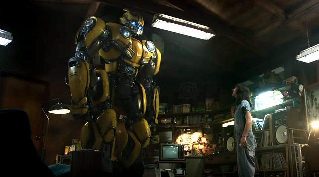 bumblebee1ojihguyfdt (3)
