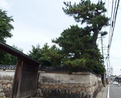 180617伊勢朝日から富田へ-11OLYMOUSXZ10