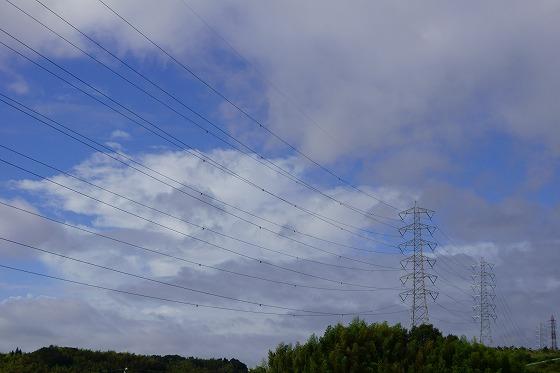 180729台風一過0755