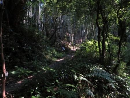 三折れ坂 2018-07-16 035