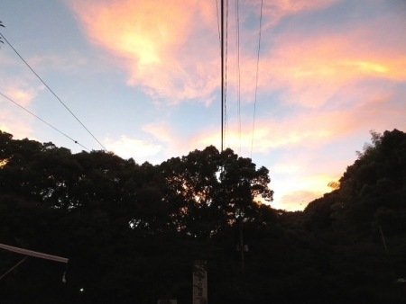 早朝清水山 2018-07-21 015